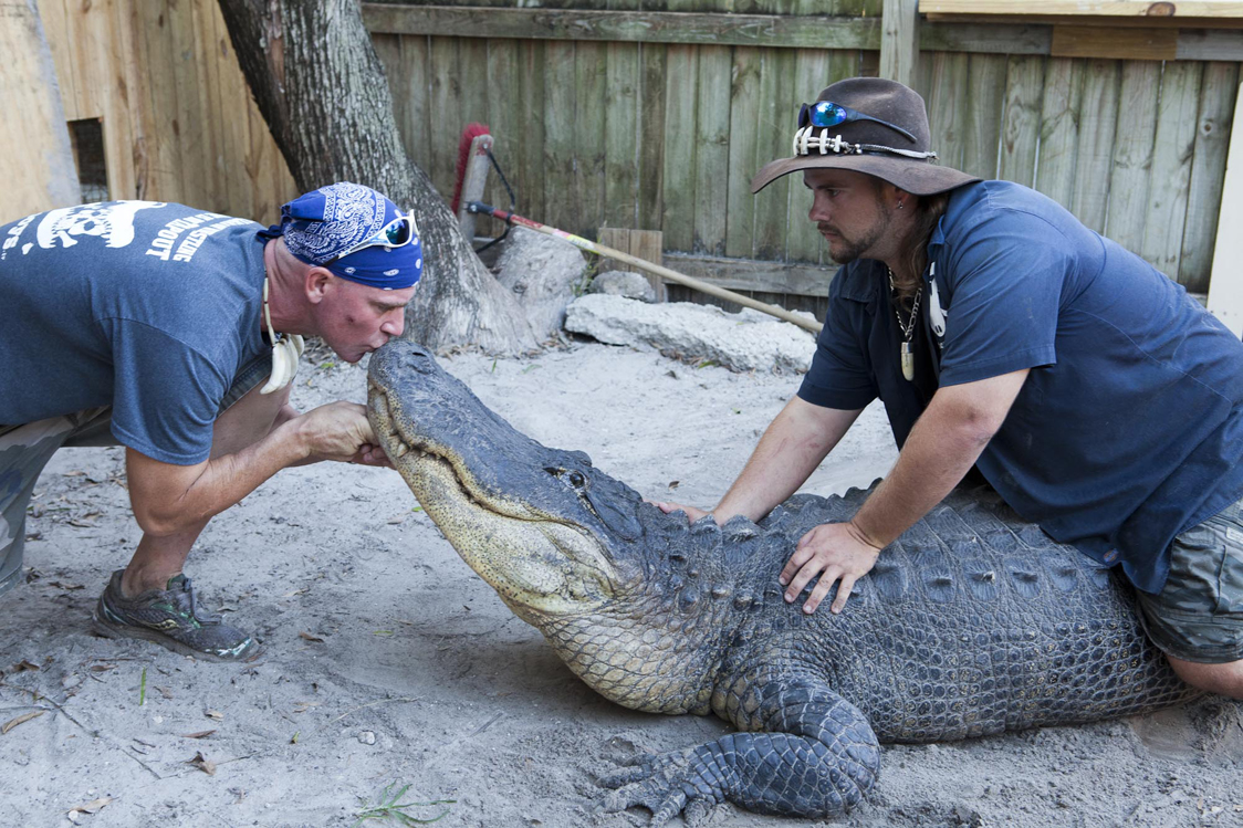 Meet the Gator Boys in Discovery Channel's newseries, premiering Nov