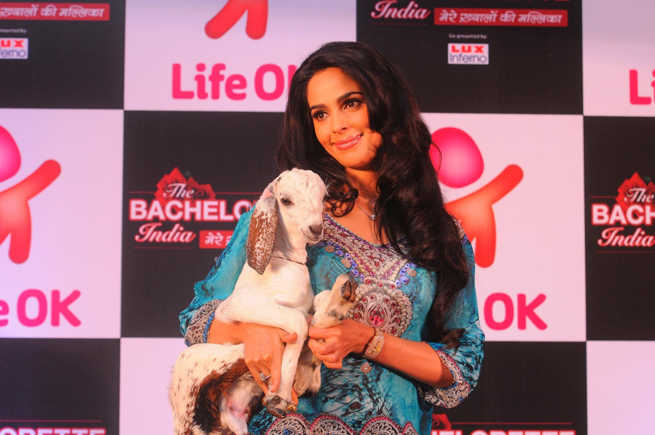The Bachelorette Tv Show Of India